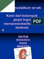 Sistem Ekskresi Pada Manusia (Ginjal) Oleh Audia Dkk Kelas 9-C