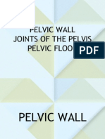 Pelvic Wall, Joints and Floor