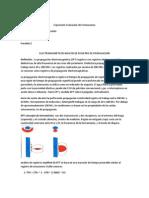 ELECTROMAGNÉTICOS BÁSICOS DE REGISTRO DE PROPAGACIÓN