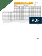 Formato Oficial Registro Mensual de Metas 2013 Gam