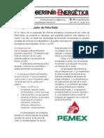 18.- Decálogo privatizador de Peña Nieto