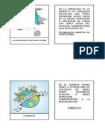 Tarjetas de 3 Periodos (Contaminacion Planeta Tierra)