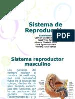 Reproduccion y Desarrollo Embrionario