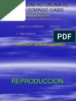 Reproduccion Humana Mariacabrera