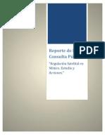 Reporte-de-la-Consulta-Pública-Satélites-19-06-2013-FINAL