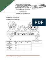 1o_Diagnostico_2013[1]