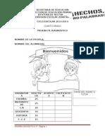 4o_Diagnostico_2013[1]