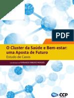 O Cluster da Saúde