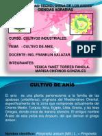 Diapositiva de Anis