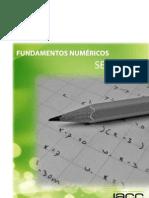 08_fundamentos_numericos