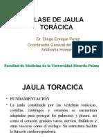 1ra Clase Torax - Jaula Toracica - Dr. Enriquez