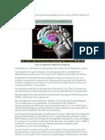 interneuronas dopaminérgicas