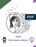 Folleto 7 Discrimnacion y Racismo Carta
