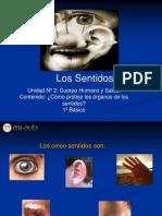 Apunte-2 Los Sentidos Nb1 Cna2-1