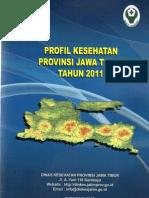 Profil Kesehatan Provinsi Jawa Timur Tahun 2011