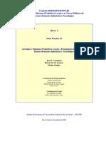 NT27_Arranjos e Sistemas Produtivos Locais e Proposições de Políticas de