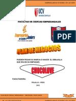 PLAN DE NEGOCIO MODELO  5 AÑO