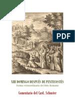 XIII DOMINGO DESPUÉS DE PENTECOSTÉS. card. schuster