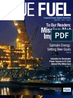 14 Blue Fuel Newsletter 1q 2012 MINI