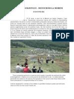 CUPA PETROLISTULUI.doc