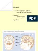 Biopsychology PInel Ch. 16 notes