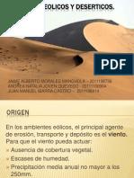 Ambientes Eolicos y Deserticos