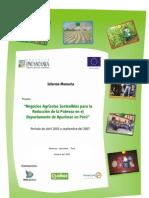 Informe Memoria P. APURIMAC