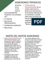 MOTORES ASINCRONOS TRIFASICOS