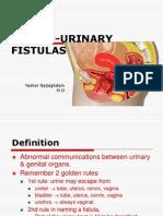 21genito-urinaryfistula-120815103344-phpapp01 (1)