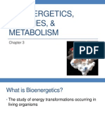 Ch.3_Bioenergetics, Enzymes, & Metabolism_Final
