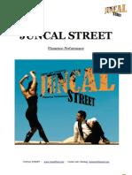 press kit -- juncal street