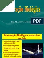 MATURAÇÃO 2012.ppt