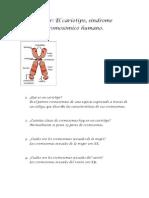 Taller Cariotipo, Sindrome Cromosomico Humno