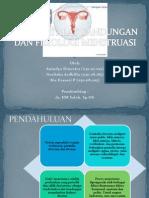 Anatomi Alat Kandungan Dan Fisiologi Menstruasi