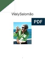 Waly Salomao