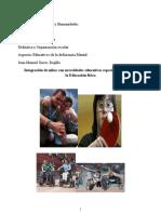 educación física en alumnos con necesidades educativas especiales