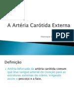 Artéria Carótida Externa