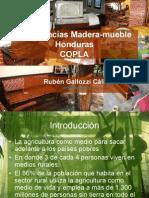 Experiencias Madera-Mueble Honduras