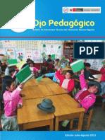 Ojo Pedagogic o Jul 2013
