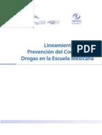 lineamientos programa de prevención