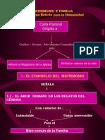CartaPastoral Mapa Conceptual