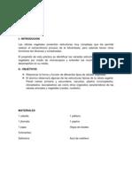 PRÁCTICA N.docx
