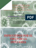 Seminario Influenza - Dra Roncal