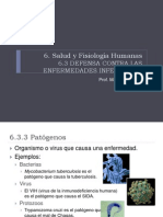 6.3 Defensa (2010)
