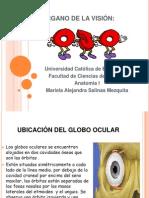 Organo de La Vision!!