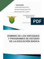 DOMINIO DE LOS ENFOQUES DE BÁSICA