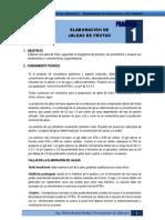 Libro Practicas Tecnicas de Procesamiento de Alimentos I
