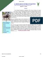 Equines in India