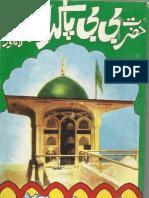 Hazrat Bibi Pak Daminaan - Lahore