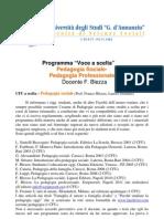 programmi_blezza_2011